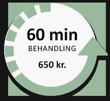 60 minutter behandling